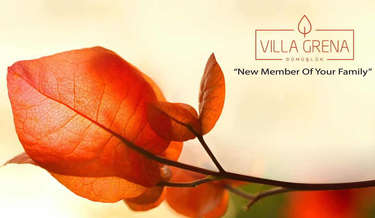 Villa Grena | New Member Of Your Family